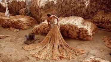 পাটজাত পণ্য উৎপাদন বৃদ্ধিতে সহায়তা করবে সরকার