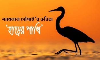 শ্যামলাল গোঁসাই'র কবিতা 'হাড়ের পাখি'