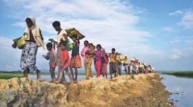 রোহিঙ্গা গণহত্যা: আইসিজে-তে মামলার পক্ষে নথিপথ জমা গাম্বিয়ার