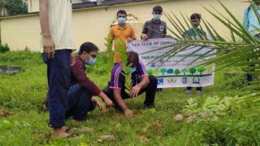 লিও ক্লাব অব কুমিল্লা ইউনিভার্সিটির বৃক্ষরোপণ