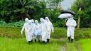 দেশে করোনায় আরও ৬ মৃত্যু, শনাক্তের হার ২ শতাংশের নিচে