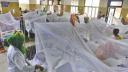 দেশে একদিনে শতাধিক ডেঙ্গু রোগী হাসপাতালে ভর্তি